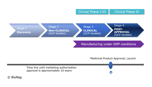 Development steps for medicines
